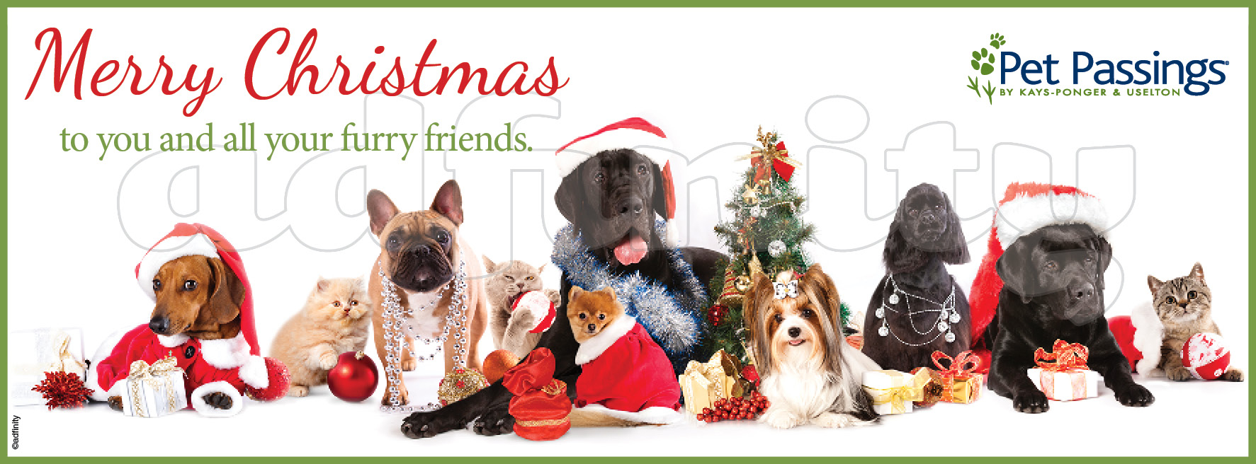 Merry Christmas to you and all your furry friends! (Facebook cover ...