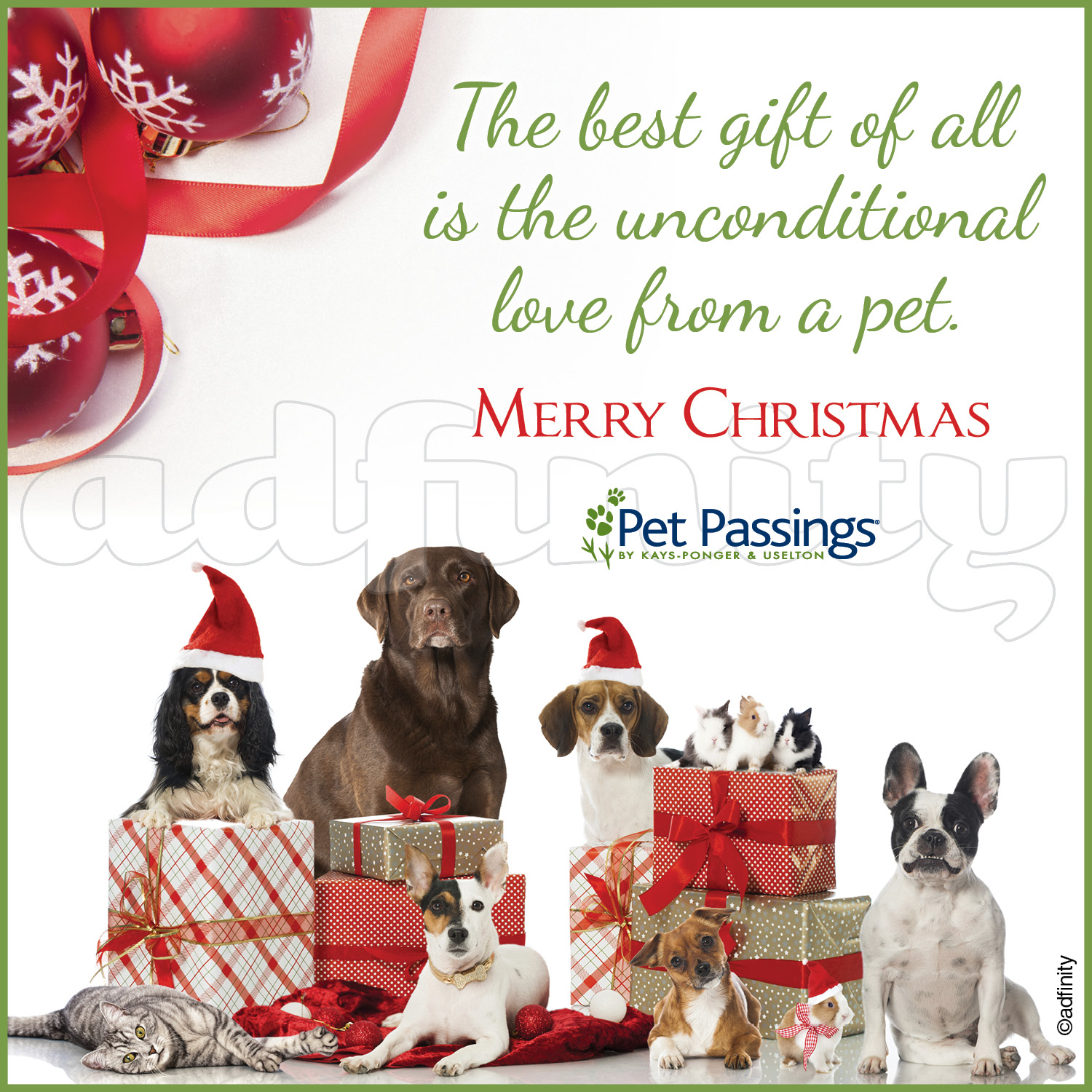The best gift of all is the unconditional love from a pet. Merry ...