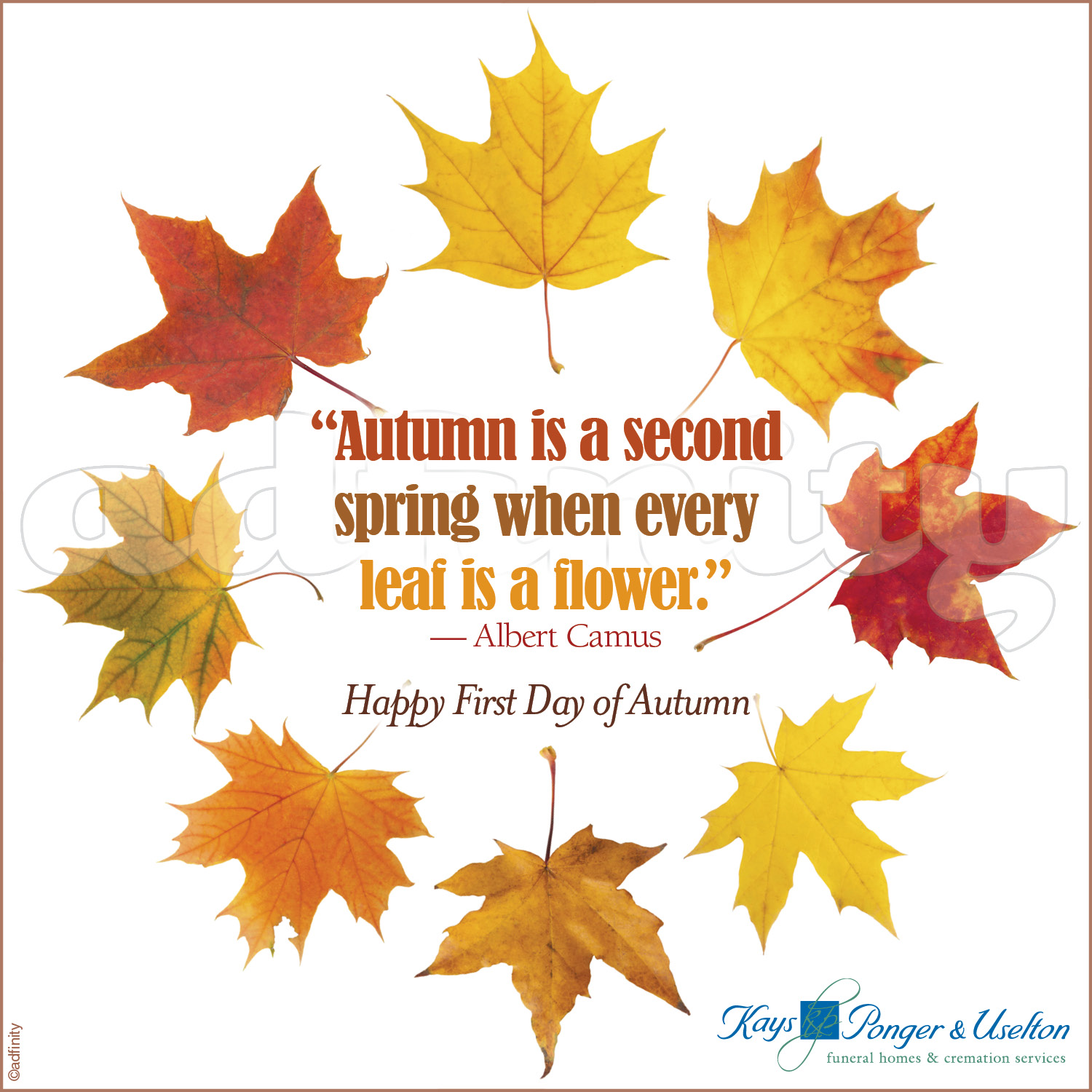 Autumn is a second spring when every leaf is a flower. (Facebook) -...