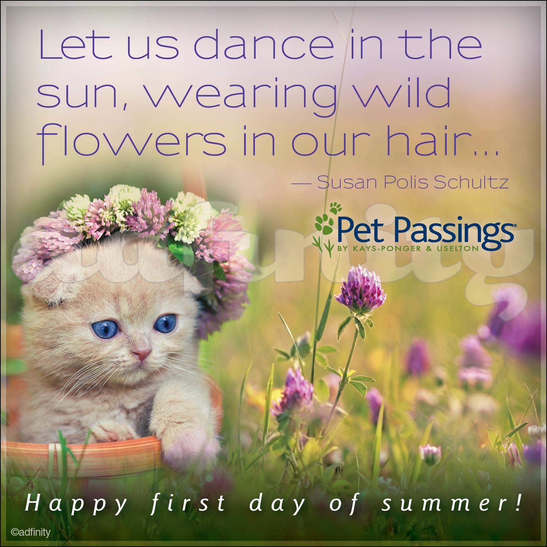 061504 Happy First Day Of Summer! Susan Polis Schultz Quote Facebook  Meme